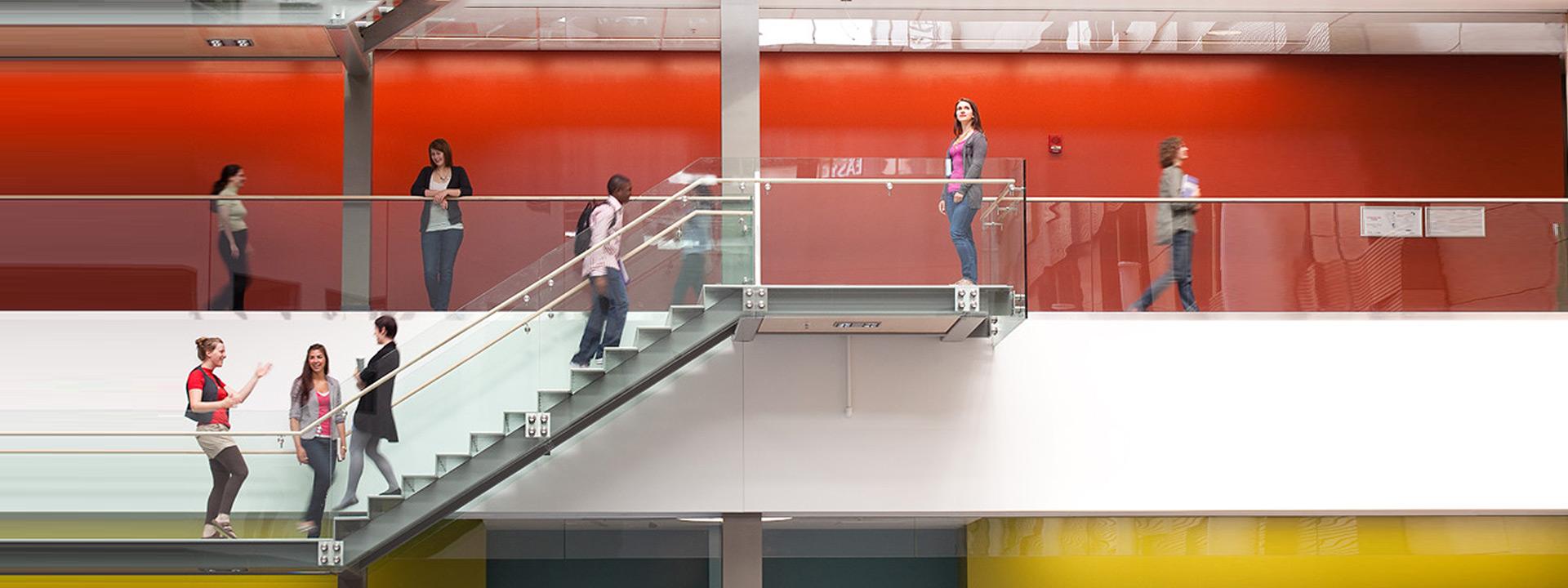 Comparer les universités